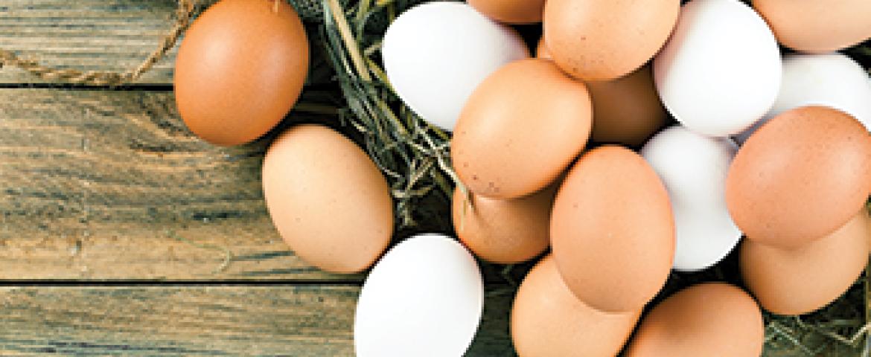 Kahverengi Yumurta, Beyaz Yumurtadan Daha Mı Sağlıklı?